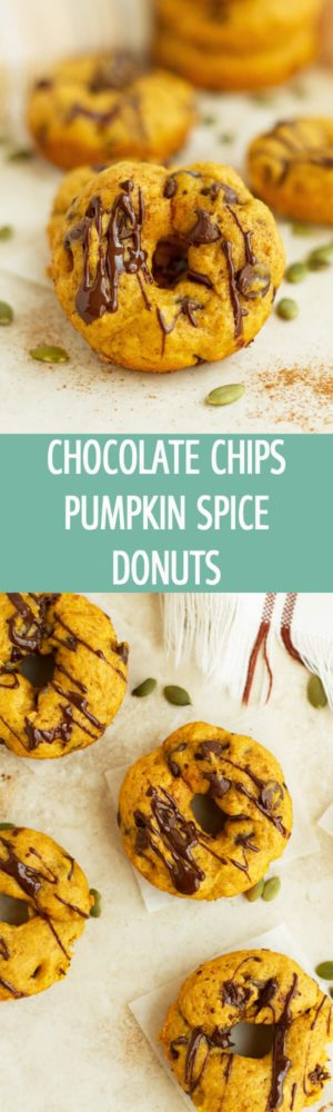 Baked mini Chocolate Chips Pumpkin Spice Donuts is the perfect recipe for fall party. Great for after school treat as well! by ilonaspassion.com I @ilonaspassion