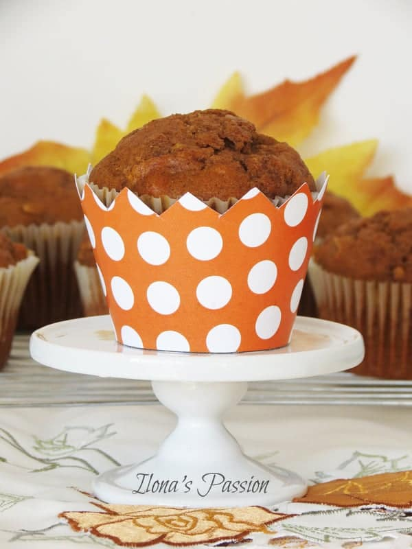 Cinnamon Pumpkin Apple Muffins by ilonaspassion.com