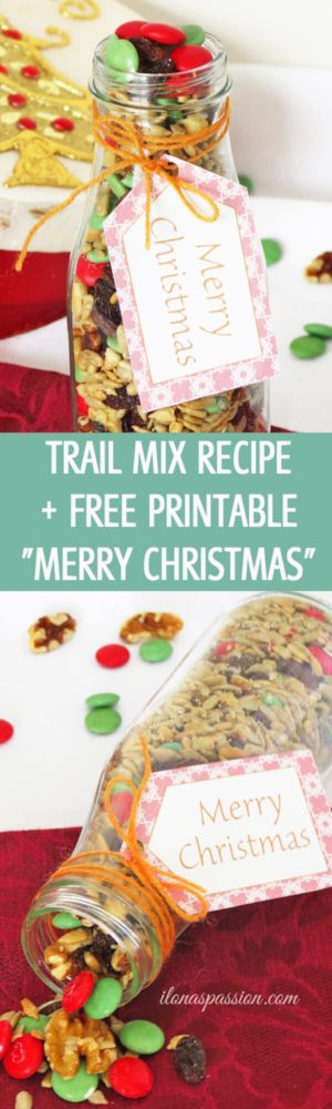 Easy Snack Recipe: Trail Mix + Free Printable Christmas Tags by ilonaspassion.com I @ilonaspassion