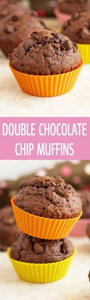 Full of chocolate double chocolate chip muffins recipe are perfect for brunch or birthday party. Moist, mouthwatering and decadent muffins by ilonaspassion.com I @ilonaspassion